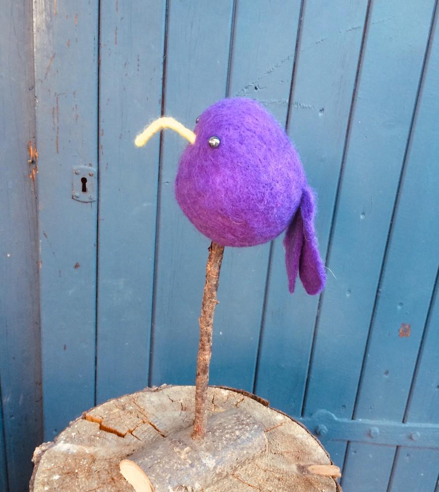 Ziemlich verrückte Vögel