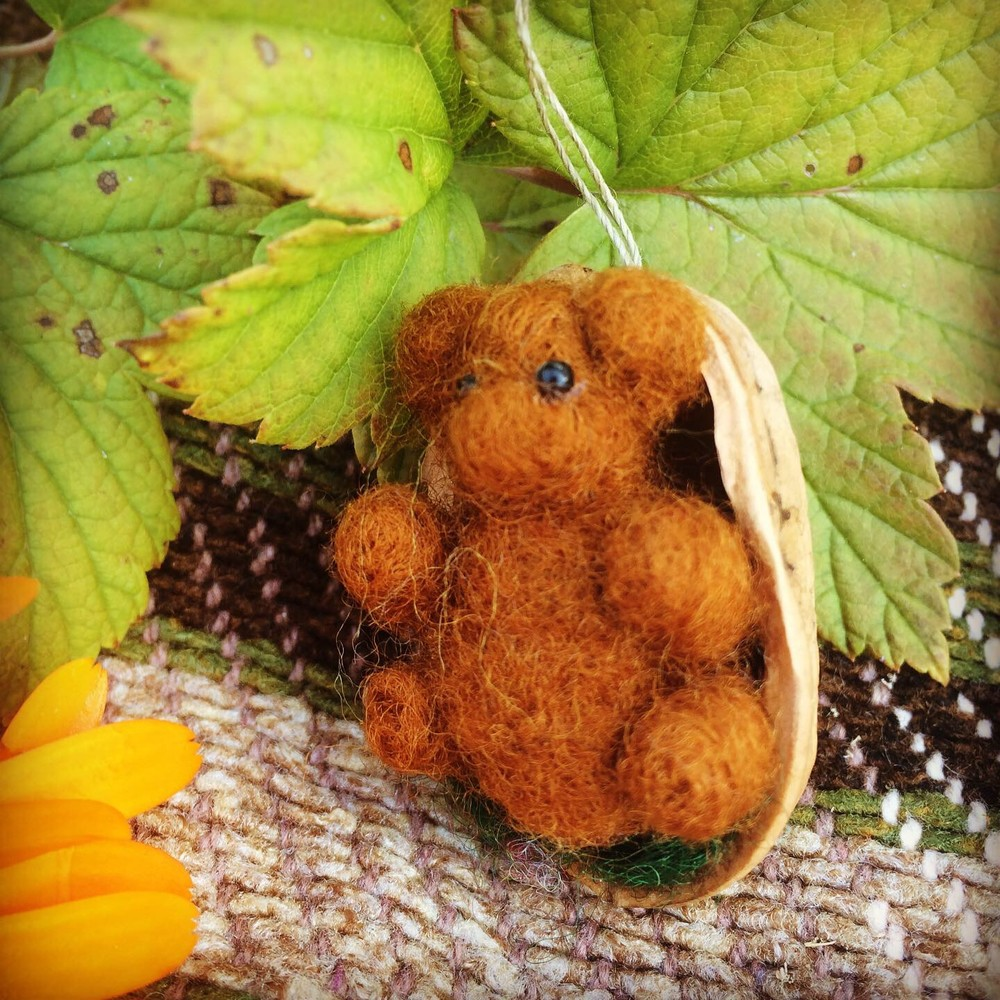 brauner Teddy