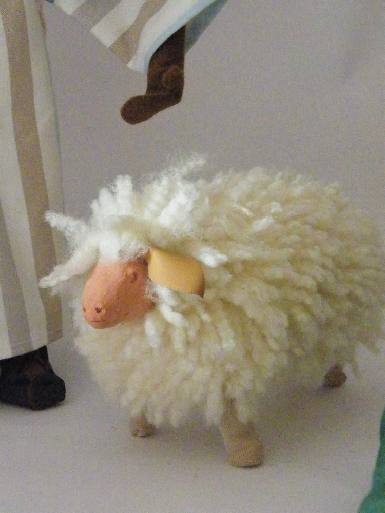 Schafe so richtig schön